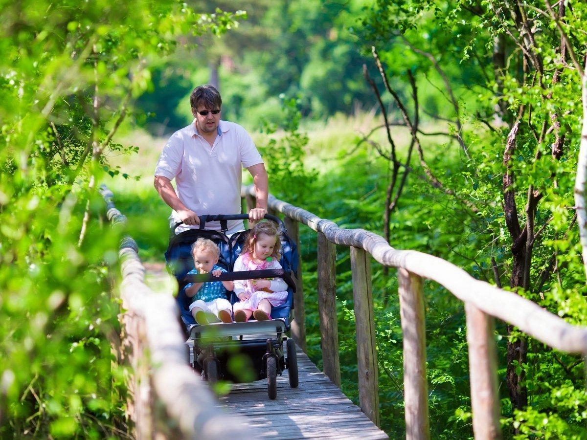 Top Best Double Baby Strollers