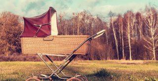 Top Best Baby Stroller Wagons